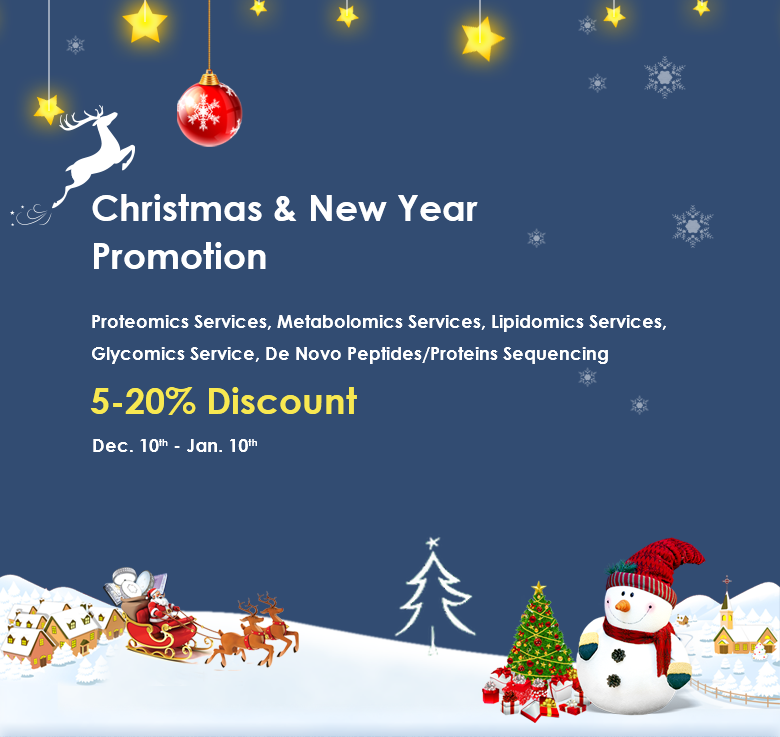 Christmas & New Year Promotion