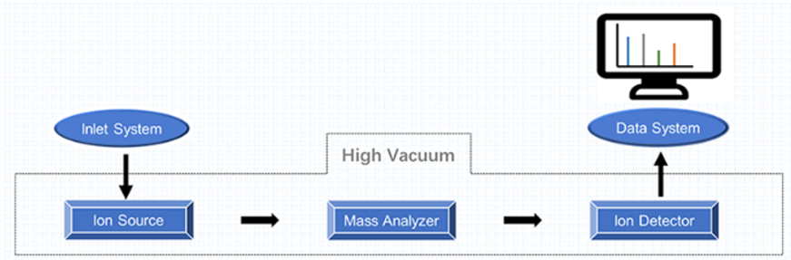 Mass Spectrometry Platform—A Brief Introduction to The Mass Spectrometer