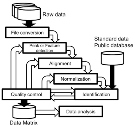 Bioinformatic Analysis for Metabolomics Study
