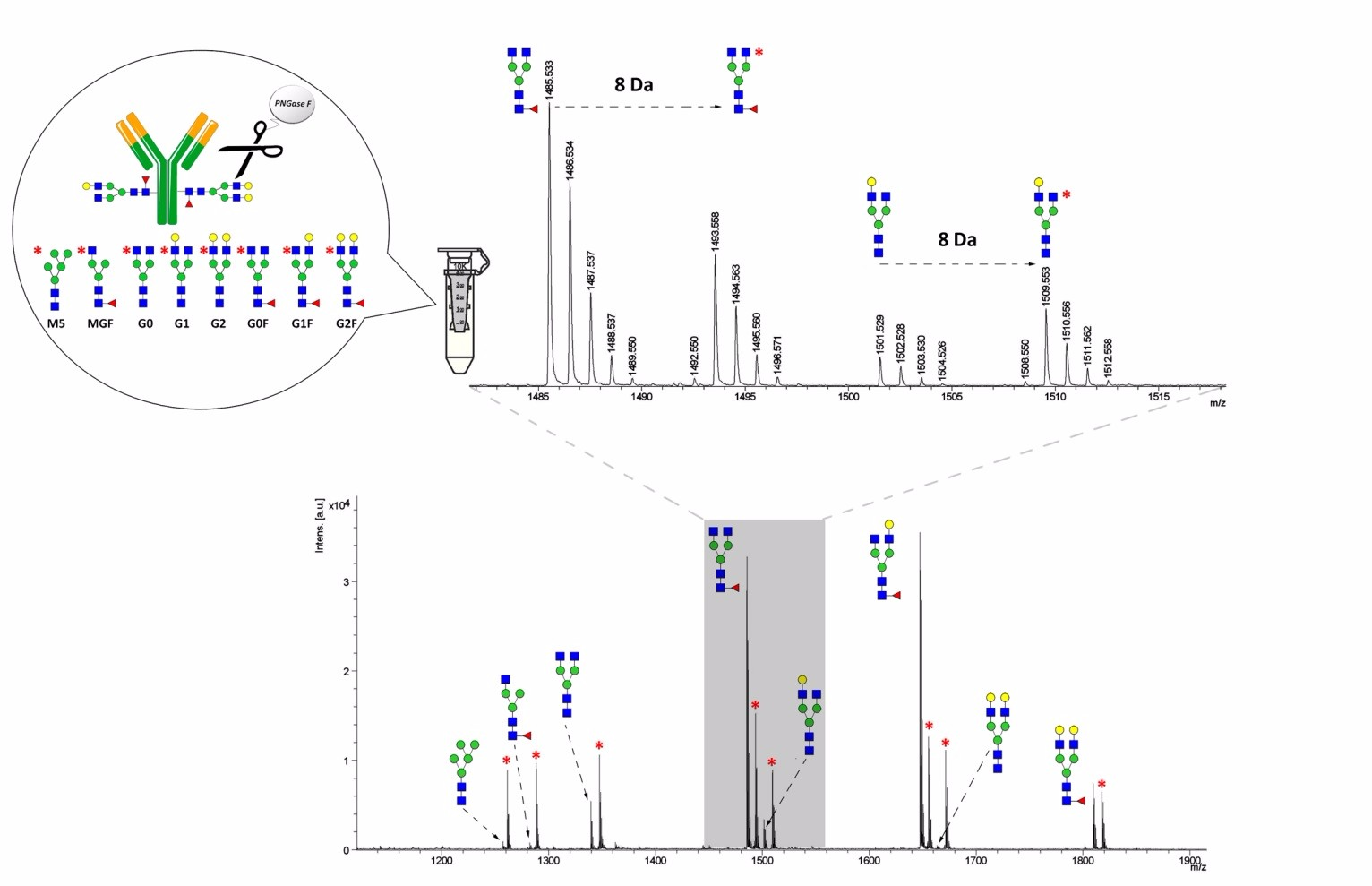 Glycan Quantification