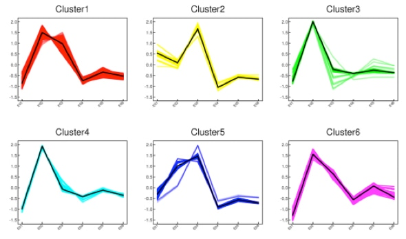 K-means Clustering Service