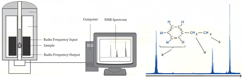 NMR based Analysis Service