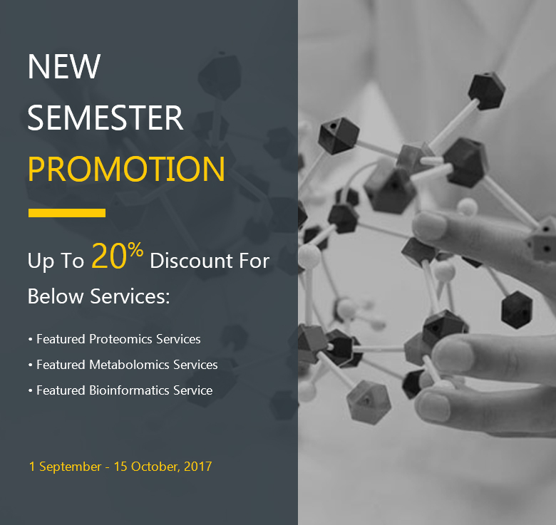 New Semester Promotion 2017