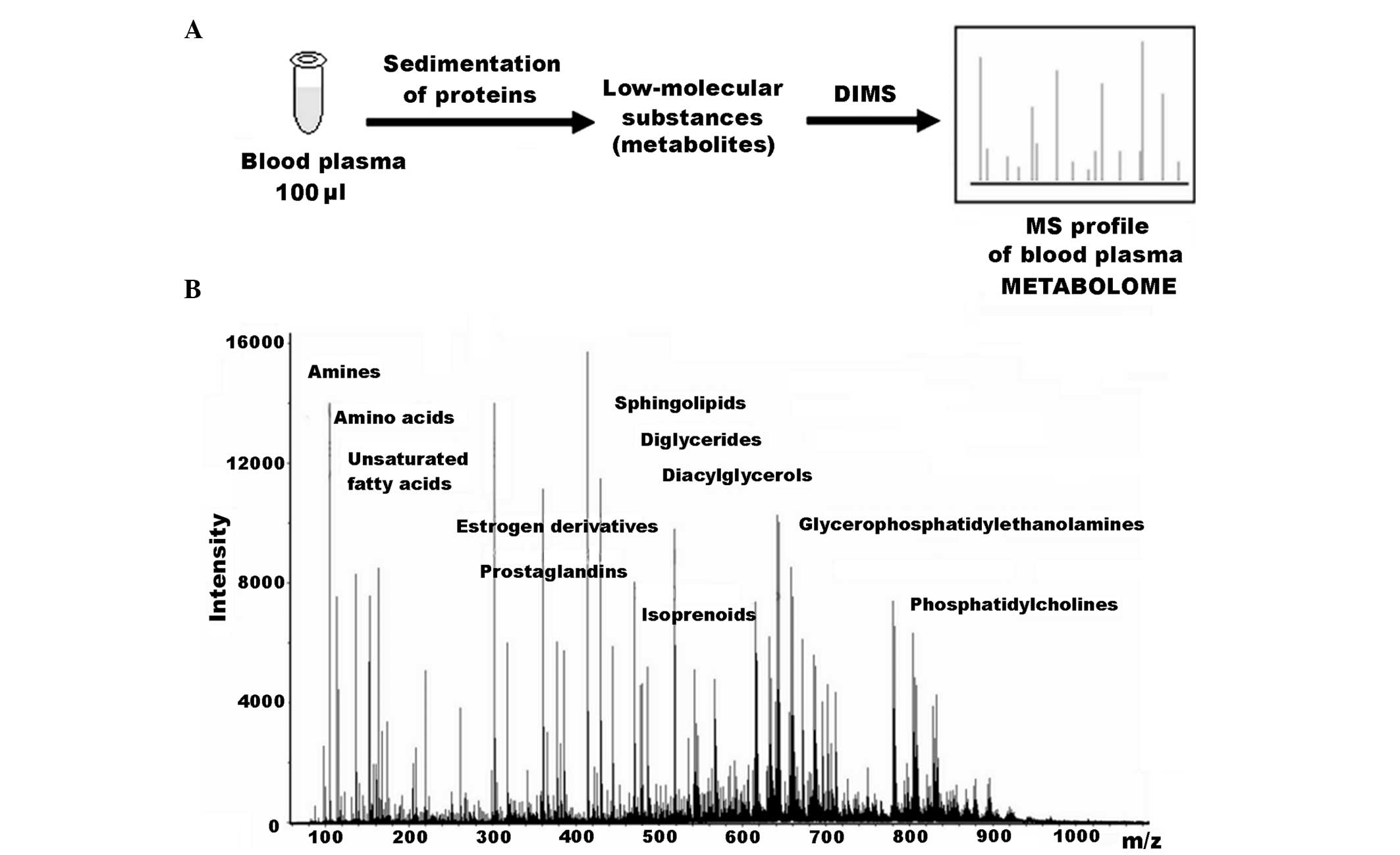 Serum Untargeted Metabolomics
