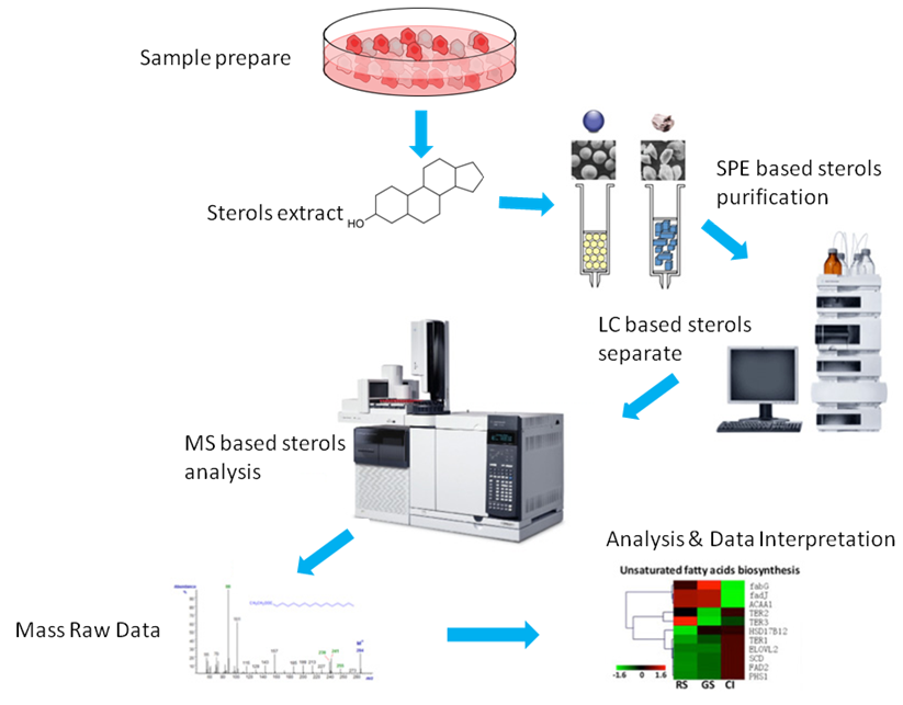 Sterol Lipids analysis Service