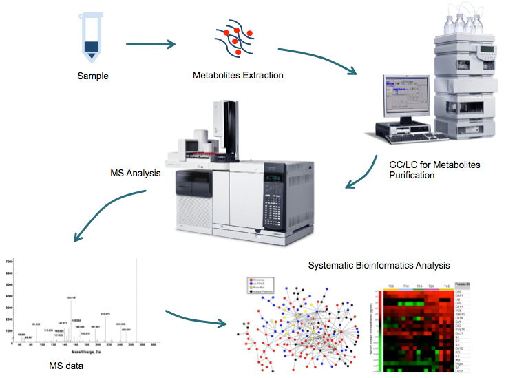 Targeted Metabolomics