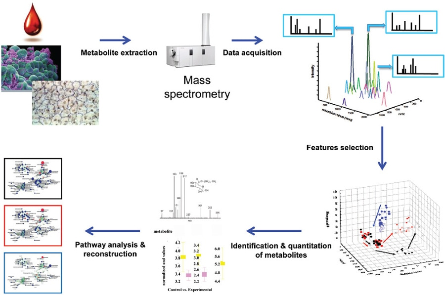 Untargeted Metabolomics